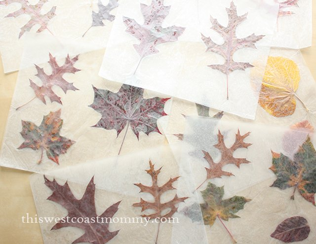 "Kids can save those beautiful fall leaves in this DIY ""book""."