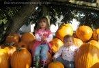 Pumpkin girls