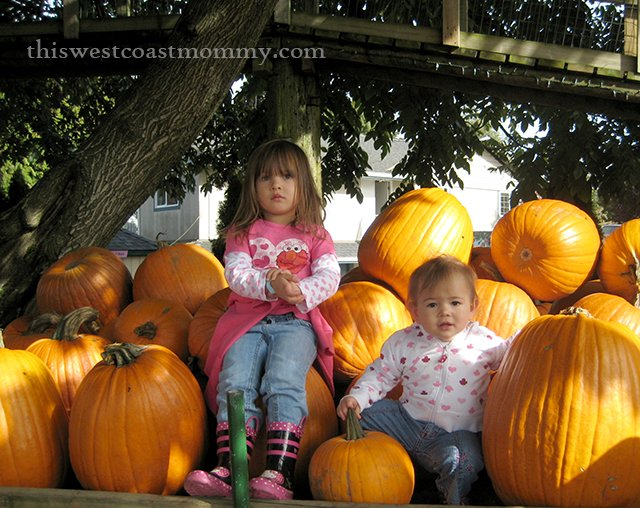 pumpkin kids