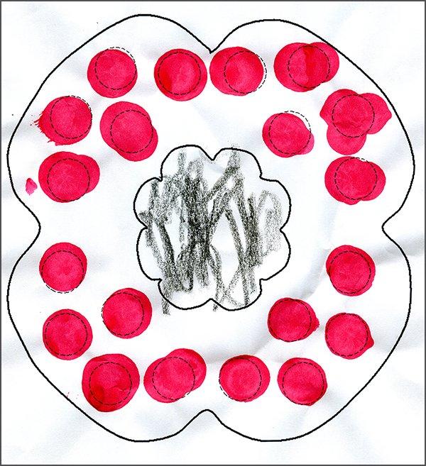 Poppy Dot Picture