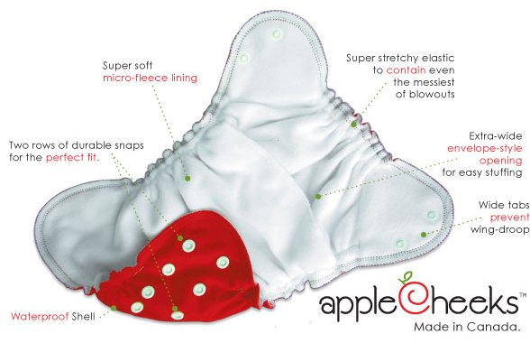 Anatomy of an AppleCheeks Cloth Diaper