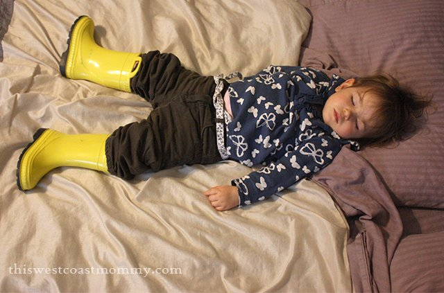 Keira napping in her boots