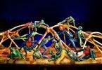 A Dazzling Evening under the Grand Chapiteau at Cirque du Soleil TOTEM