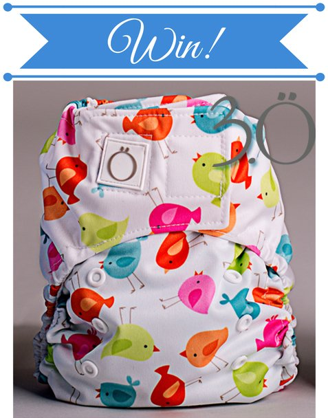 Win an Omaïki 3.Ö Hybrid Cloth Diaper (US/CAN, 6/30)