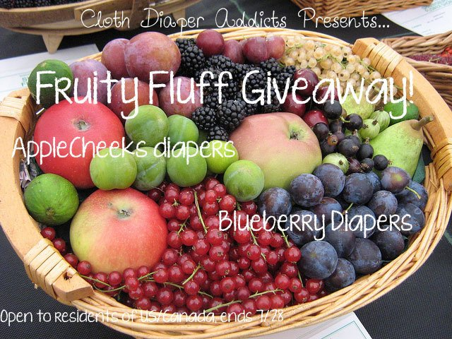 Win an AppleCheeks Diaper with Insert and a Blueberry Deluxe Diaper! (US/CAN, 7/28)