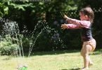 Wordless Wednesday: Backyard Sprinkler