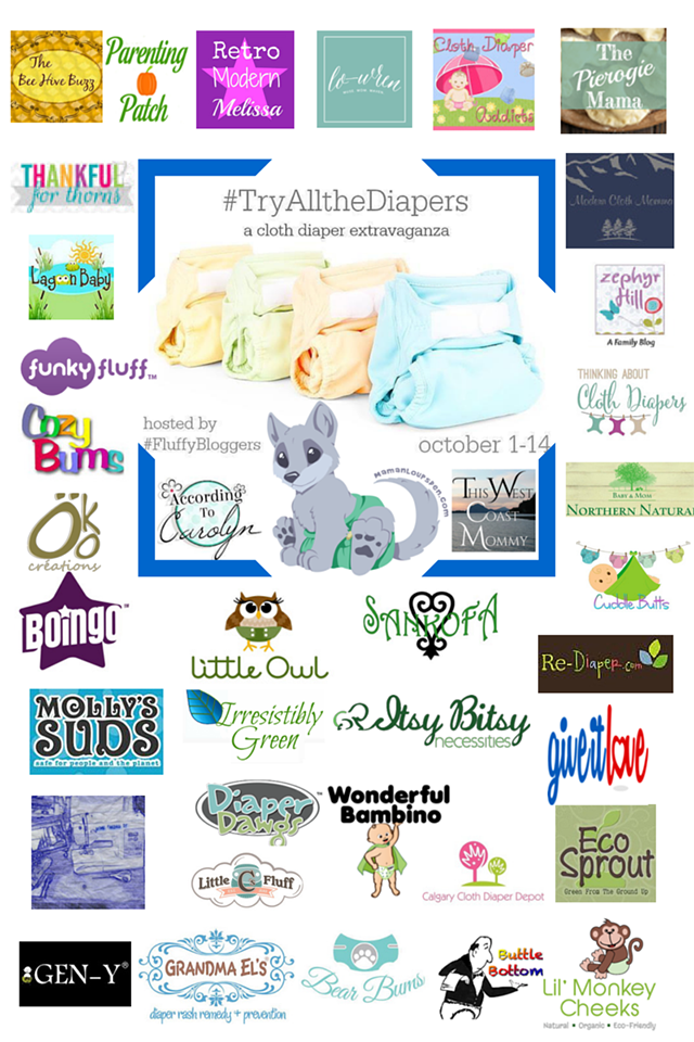 TryAlltheDiapers-Sponsors-and-Bloggers