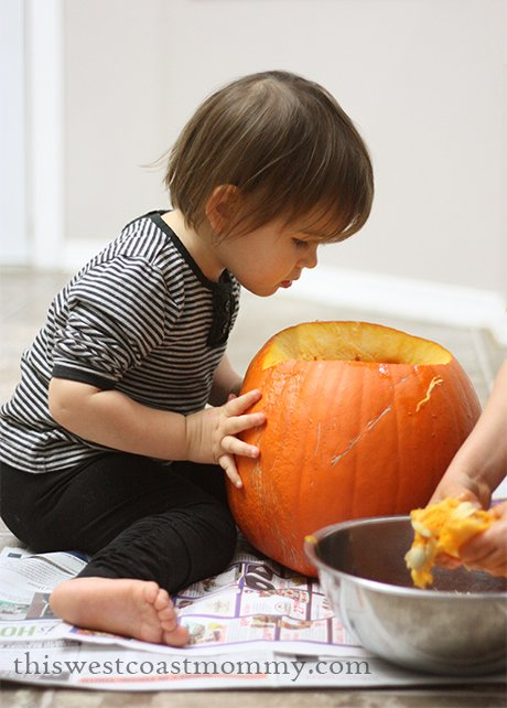 What's in the pumpkin?