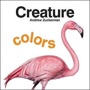 Creature Colors board book