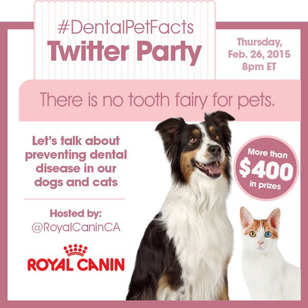 DentalPetFacts Twitter party