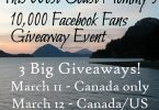 Celebrating 10,000 Facebook Fans with 3 Big Giveaways! Prize Package #1 {Closed}