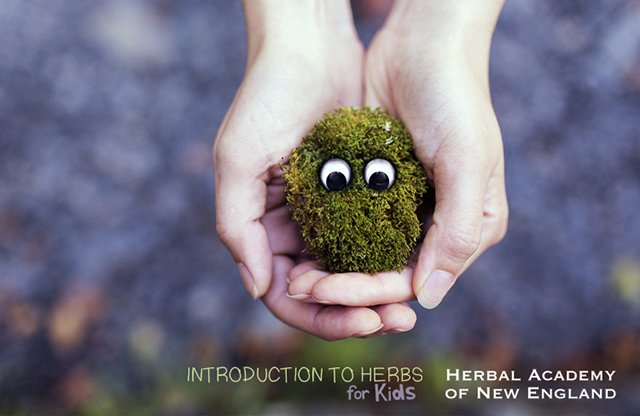 Introduction to Herbs for Kids (Part 1 of 7) from Herbal Academy of New England