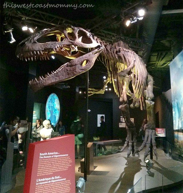Science World - Gigantosaurus