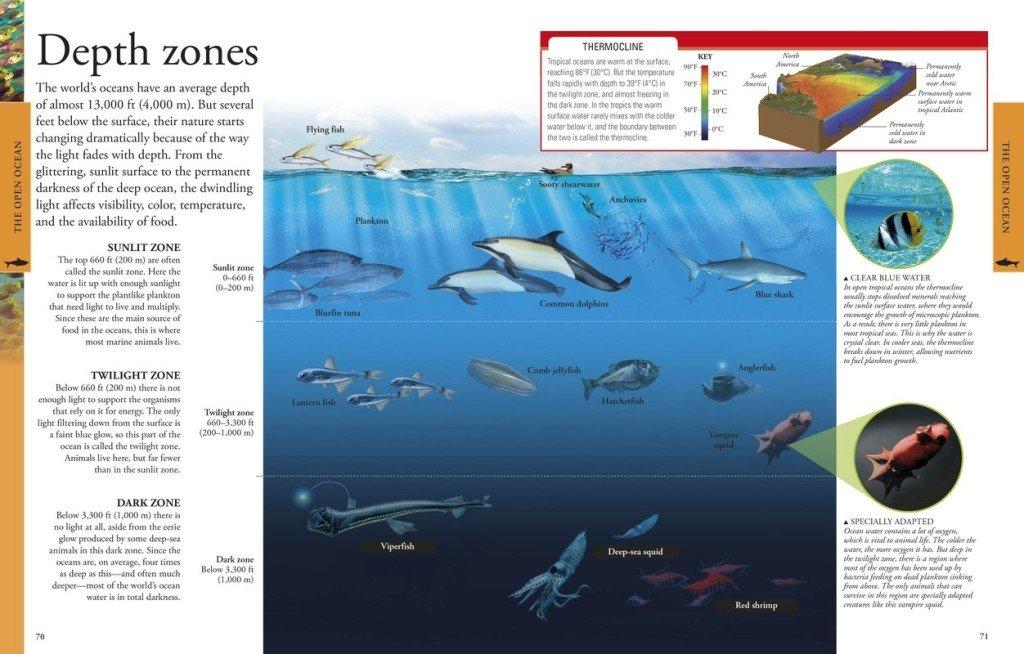 DK Oceans - Depth Zones