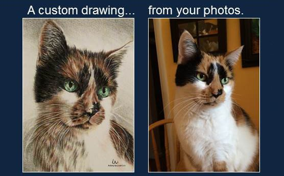 Commission a custom portrait from your favourite photograph