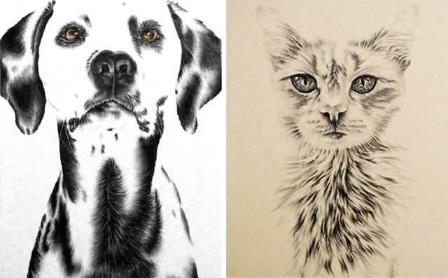 Dalmation & white cat prints