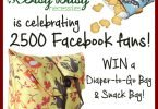 Itsy Bitsy Necessities is Celebrating 2500 Fans with a Diaper-to-Go Bag Giveaway! {Giveaway Closed}