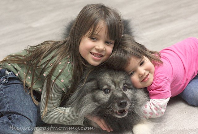 Foster Naturals' products are safe and non-toxic for the entire family, including our furry friends!
