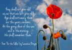 Wordless Wednesday: We Shall Remember Them