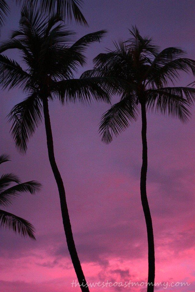 Buenas noches. Punta Cana, Dominican Republic