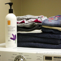 ecoorganic laundry detergent
