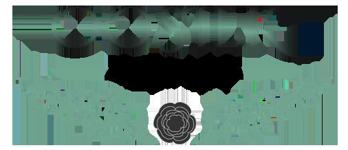 OOSilk logo