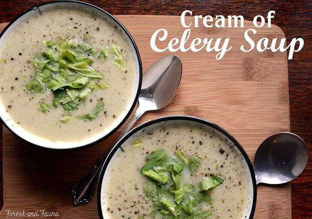 Cream of Celery Soup - Forest and Fauna