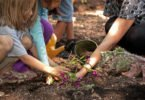 6 Tips to Get Kids Gardening This Summer