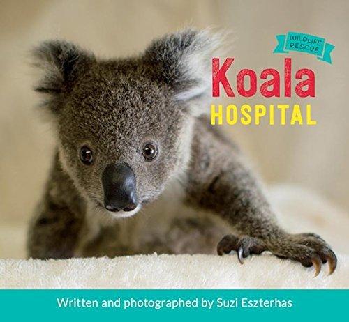 Koala Hospital by Suzi Eszterhas
