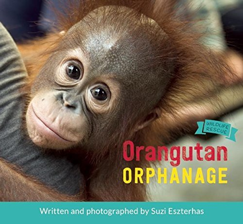 Orangutan Orphanage by Suzi Eszterhas