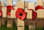 5 Ways to Talk to Your Child About Remembrance Day