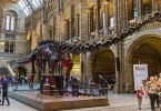9 International Destinations for Dinosaur Lovers