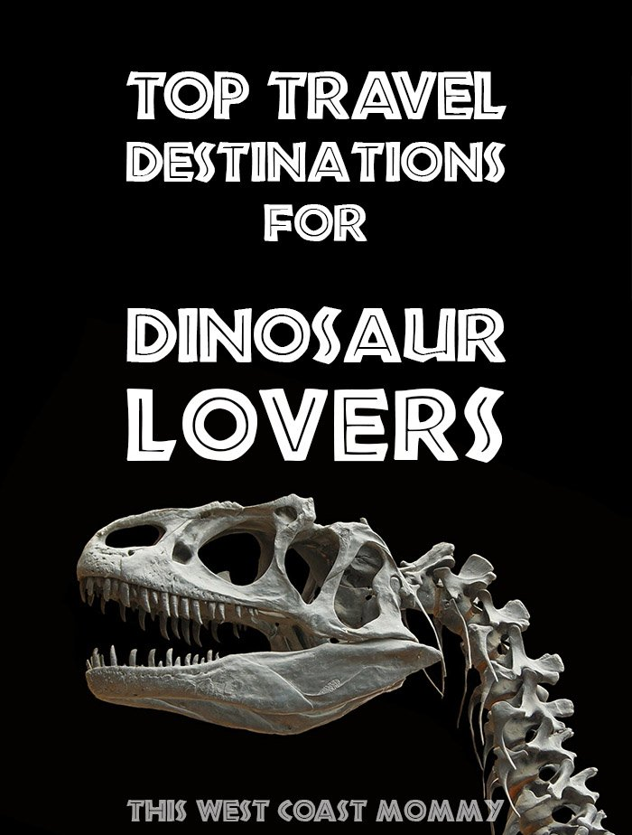 2dbf81bce881 Check out some of the best places in Canada and the US to bring the family  to see and touch dinosaur fossils, find out how they lived, and learn more  about ...