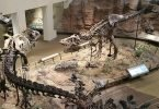 Top 8 Destinations in North America for Dinosaur Lovers