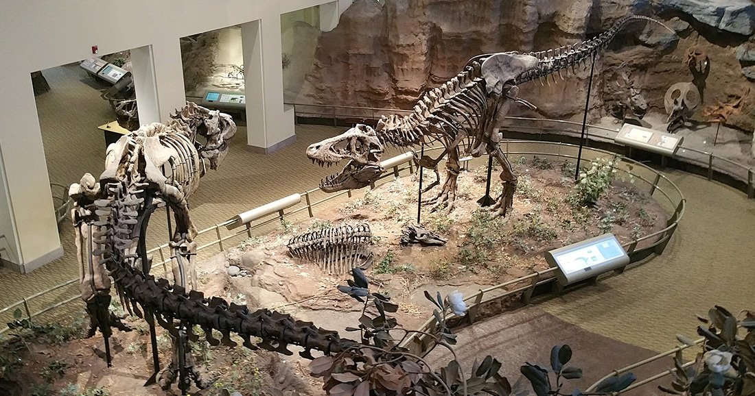a5da4087ca59 Top 8 Destinations in North America for Dinosaur Lovers | This West Coast  Mommy