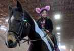 Pony Birthday Parties at A&T Equestrian