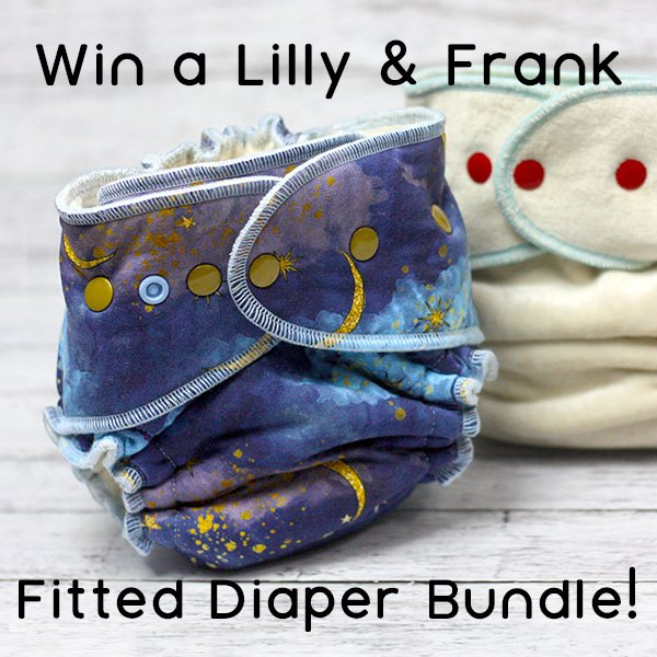 Win a Lilly & Frank Diaper, Booster, and Wipes (US/CAN, 4/8)