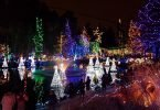The Best and Brightest Christmas Events in Greater Vancouver
